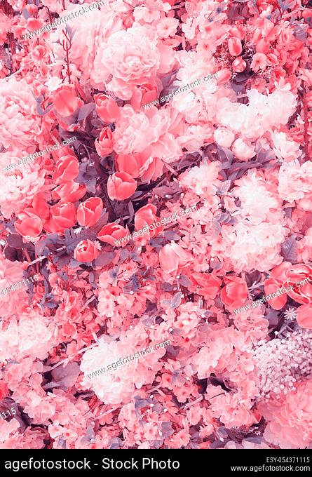 Abstract background of flowers. Faded color tone