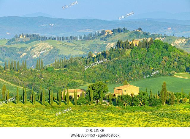 Tuscany Countryside in Spring, Asciano, Siena, Grete Senesi, Italy, Tuscany