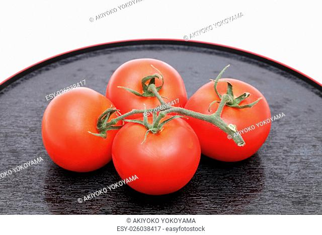 branch of tomato on a tray