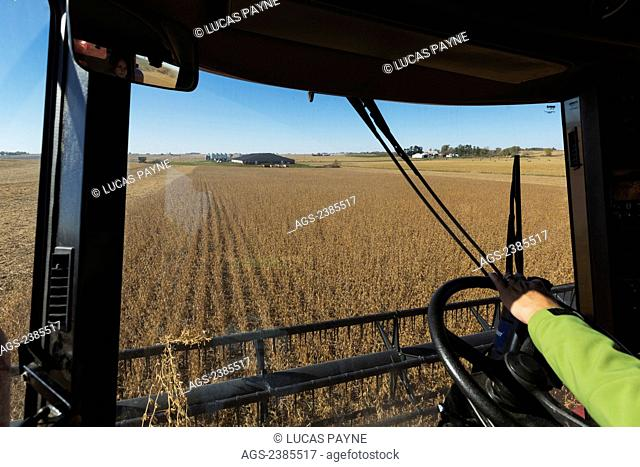 View from the interior of a combine harvesting beans in Northeast Iowa; Iowa, United States of America