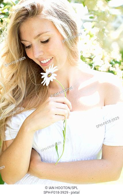 MODEL RELEASED. Young woman holding daisy, smiling