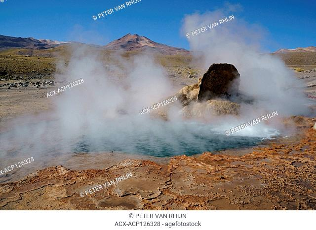 During the cold morning hours, geysers produce copious amounts of steam. El Tatio Hot Springs, Elevation 14,000 ft. Andes Mountains, Chile,South America