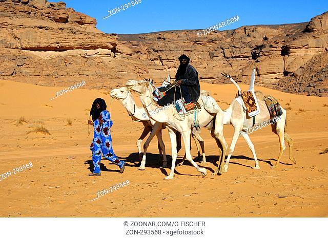 Tuareg Nomaden mit weissem Reitkamel Mehari, Akakus Gebirge, Libyen / Tuareg nomads with white Mehari riding dromedary, Acacus Mountains, Libya
