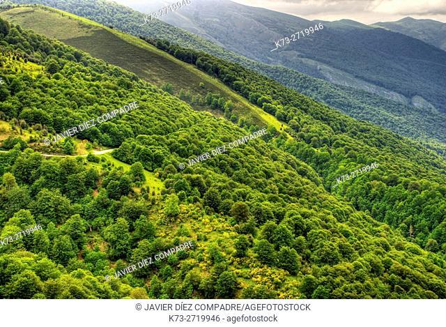Palombera Mountain Pass. Saja-Besaya Natural Park. Cantabria. Spain