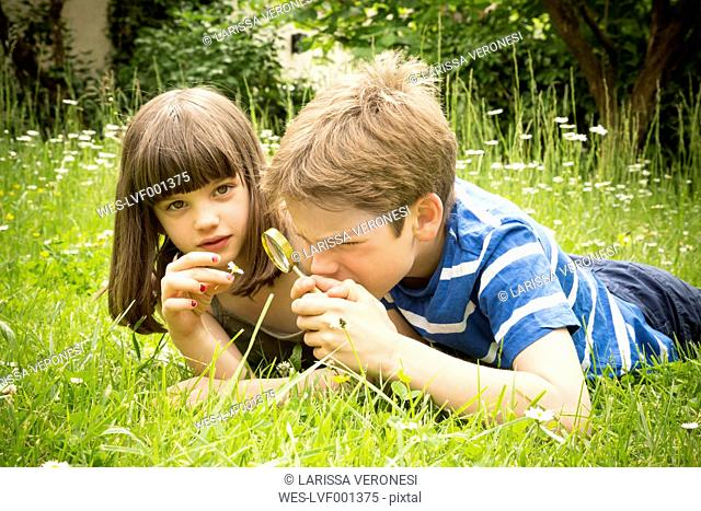 Portrait of brother and sister lying on meadow in the garden having fun with magnifying glass