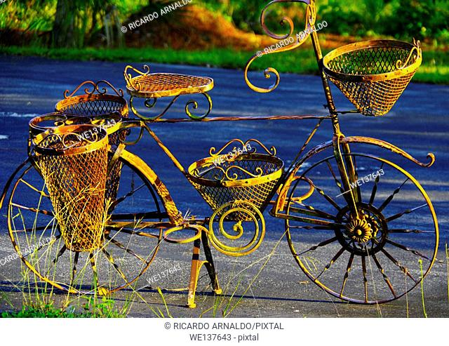The garden bicycle