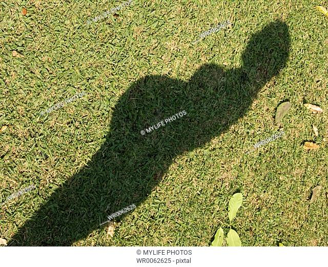 shadow of pregnant woman