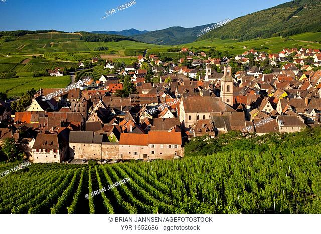 Early morning overlooking village of Riquewihr, along the Wine Route, Alsace Haut-Rhin France