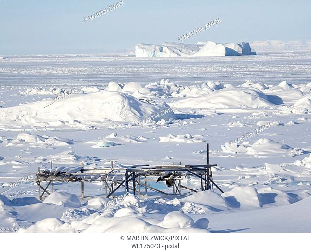 Kajaks on rack at the shore of the frozen Disko Bay. Town Ilulissat at the shore of Disko Bay in West Greenland. The icefjord nearby is listed as UNESCO world...