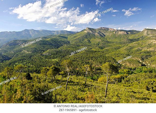 Valle del Río Tus. Sierra del Cujón al fondo. Parque Natural de los Calares del Mundo y de la Sima. Yeste. Province of Albacete. Spain
