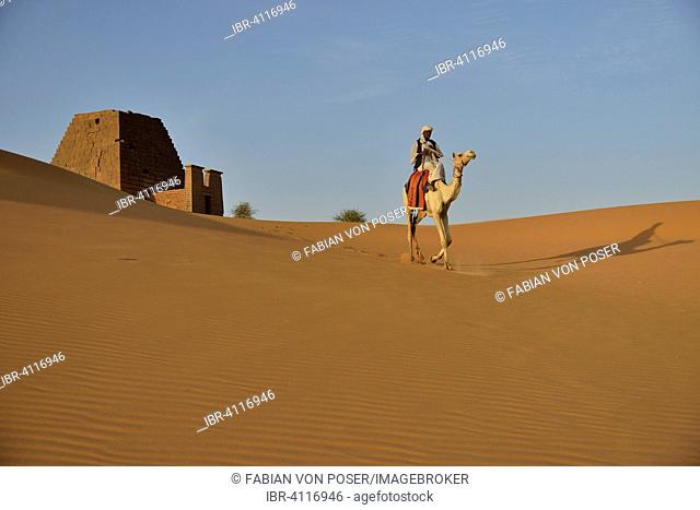 Man riding a dromedar in front of a pyramid of the northern cemetery of Meroe, Nubia, Nahr an-Nil, Sudan