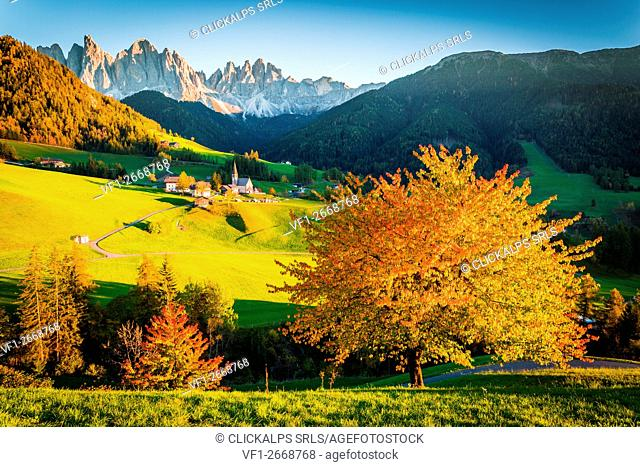 Autumn in the Alps, Funes Valley, Trentino Alto Adige, Italy. Mountain peaks in background