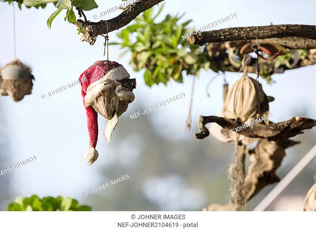 Christmas decoration on branch