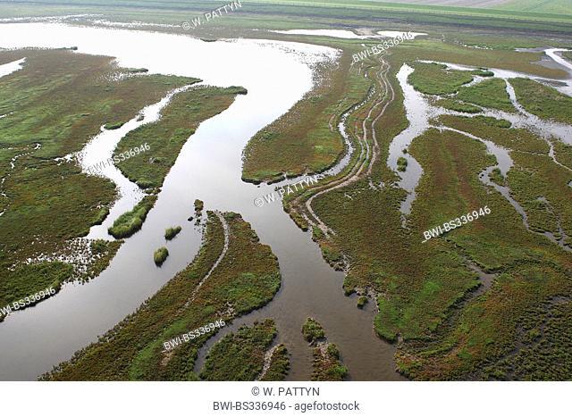 aerial view to river delta Verdronken land van Saeftinghe, Netherlands, Zeeuws-Vlaanderen, Verdronken land van Saeftinghe