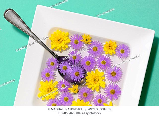 Abstract Plate dish with autumn flowers on green background