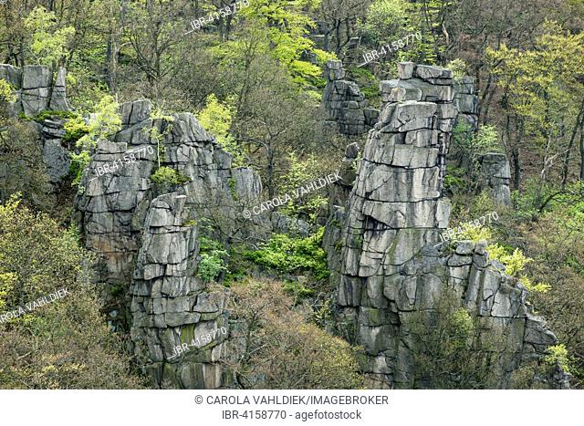 View from the Hexentanzplatz plateau onto pinnacles and forest in the Bode Gorge, eastern Harz, Saxony-Anhalt, Germany