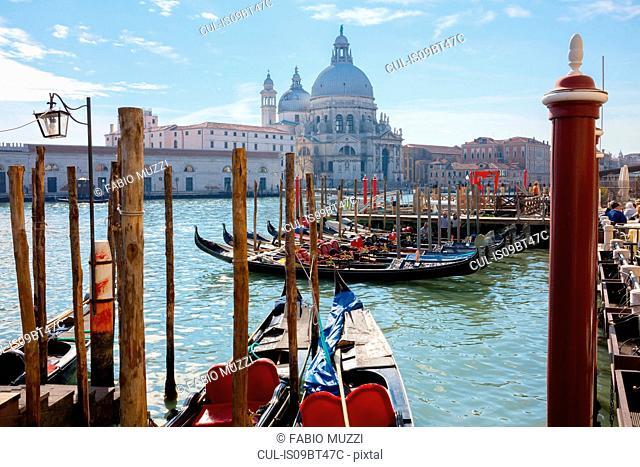 Gondolas on Grand canal near Saint Maria Della Salute church, Venice, Veneto, Italy