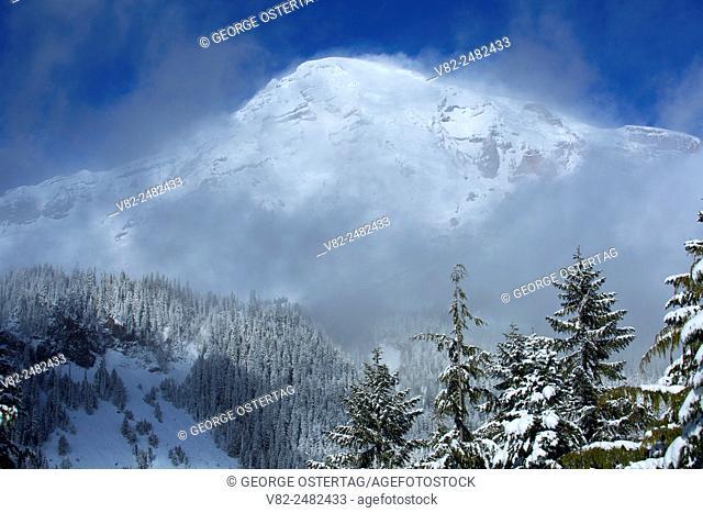 Mt Rainier, Mt Rainier National Park, Washington