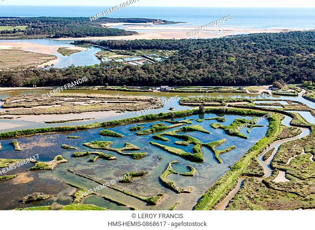 France, Vendee, Talmont Saint Hilaire, la Guittiere marshes before the Veillon beach and the Pointe du Payre (aerial view)