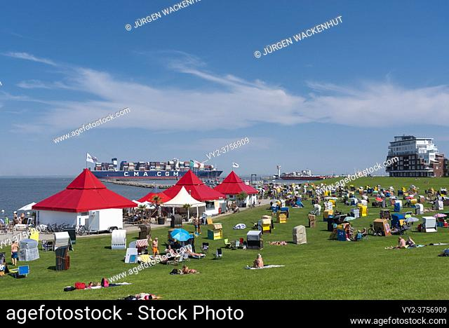 Grassy beach Grimmershoerner-Bay, Cuxhaven, Lower Saxony, Germany, Europe