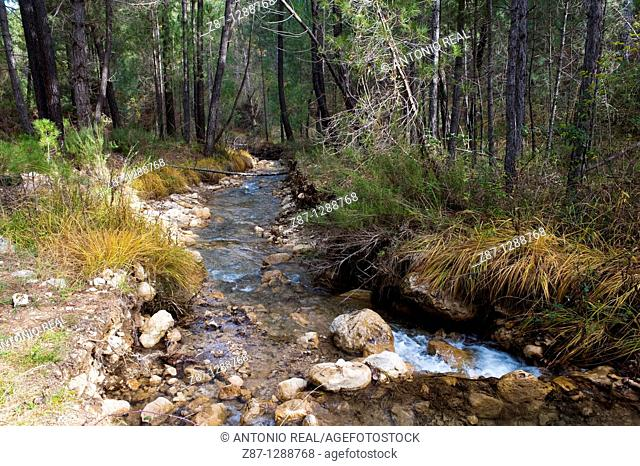 Arroyo de La Celada, Molinicos, Parque Natural de los Calares, Sierra del Segura, Albacete province, Spain