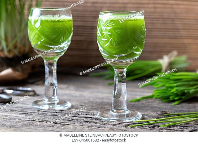 Two glasses of barley grass juice with freshly grown blades