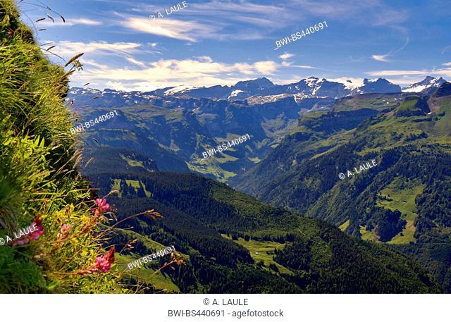 view over the Muotathal to the mountain panorama of the main Alpine ridge , Switzerland, Berner Alpen, Hoch-Ybrig