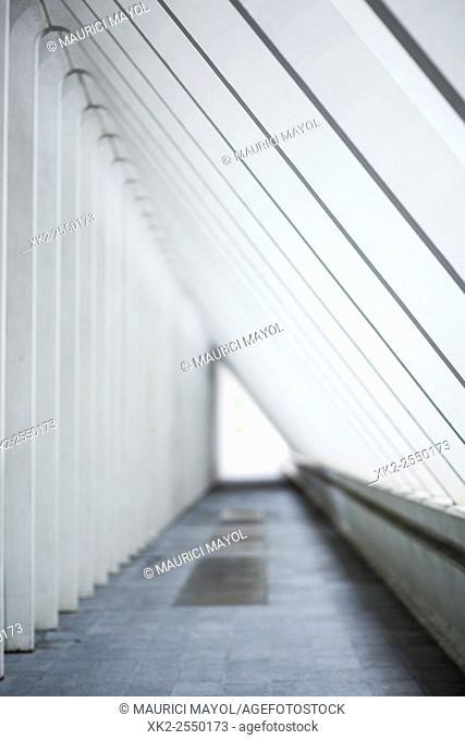 architecture, Belgium, Calatrava, Guillemins, Liege, Liège-Guillemins Railway Station, Luik, modern, railway, Santiago Calatrava, train station, white, DOF