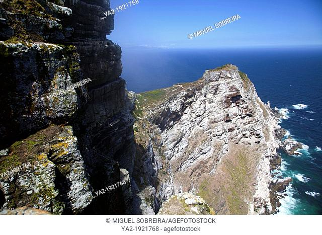 Cape Point Landscape - Cape Of Good Hope - Western Cape - South Africa