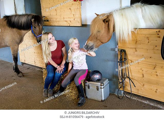 Teenager and girl sitting next to Icelandic Horses in a stable. Austria