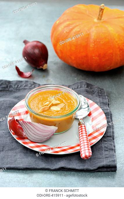 Squash and red onions soup