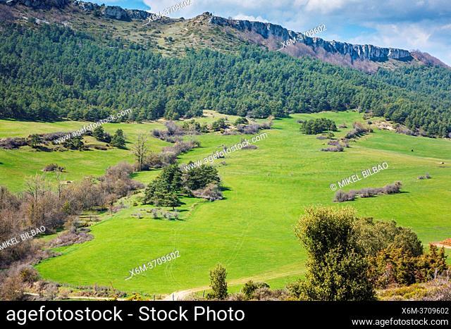 Desfiladero del Rio Puron route. Valdorejo Natural park, Alava, Spain, Europe