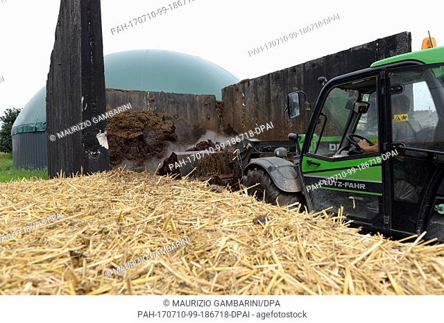A wheel loader can be seen on an ecological farm in Lanke, Germany, 10 July 2017. The eco farmer Hauser has cattle and pigs which he fattens
