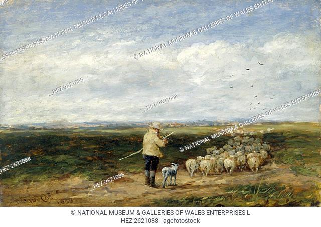 'The shepherd:Return of the flock', 1850. Artist: David Cox the elder
