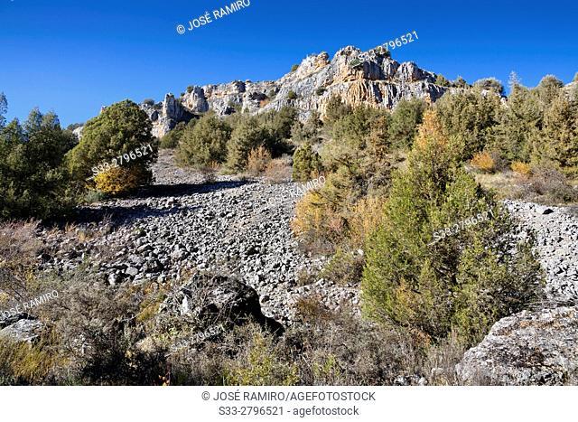 Canyon of river Riaza. Segovia. Castilla Leon. Spain. Europe