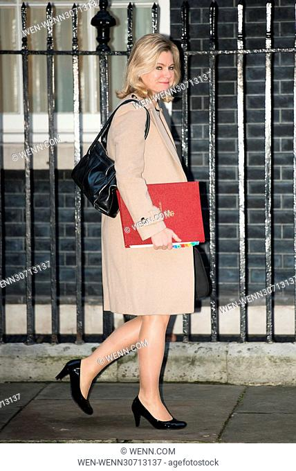 Ministers arrive for a Cabinet Meeting at 10 Downing Street. Featuring: Justine Greening Where: London, United Kingdom When: 10 Jan 2017 Credit: WENN