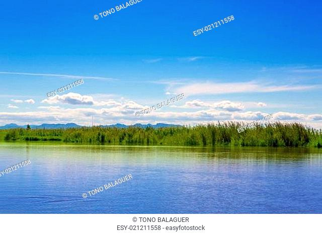 Albufera lake in Valencia in a sunny blue day