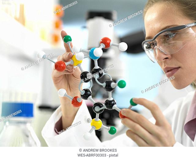 Scientist examining a drug formula design using a molecular model in the laboratory
