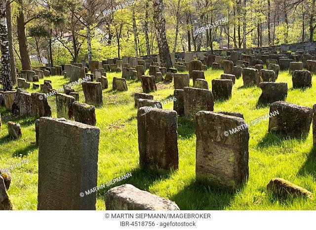 Old Jewish cemetery, Georgensgmünd, Franconian lakeland, Middle Franconia, Franconia, Bavaria, Germany
