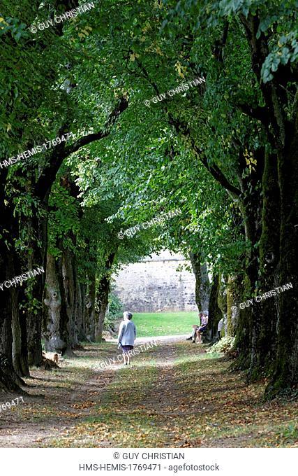 France, Yonne, Saint Sauveur en Puisaye