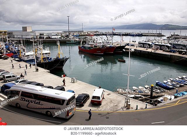Fishing port, Getaria, Gipuzkoa, Euskadi, Spain