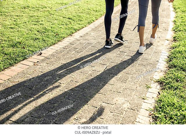 Legs and shadow of couple on path