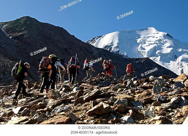 Alpinisten im Aufstieg zum Mont Blanc über die Normalroute, hinten die Aiguille de Bionnassay, Mont Blanc-Massiv, Hochsavoyen