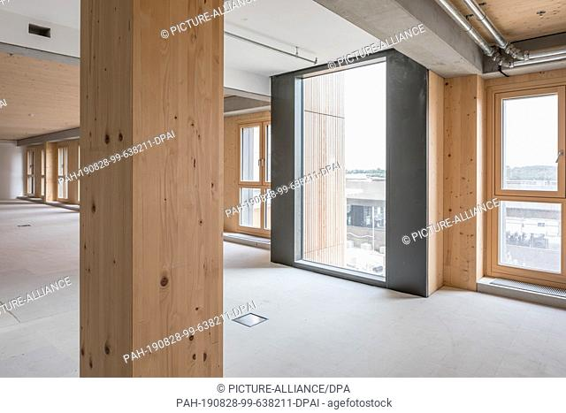 """27 August 2019, Austria, Wien: Wooden columns stand inside the new """"""""Hoho Wien"""""""", a high-rise building that consists of 75 percent wooden parts from the first..."""