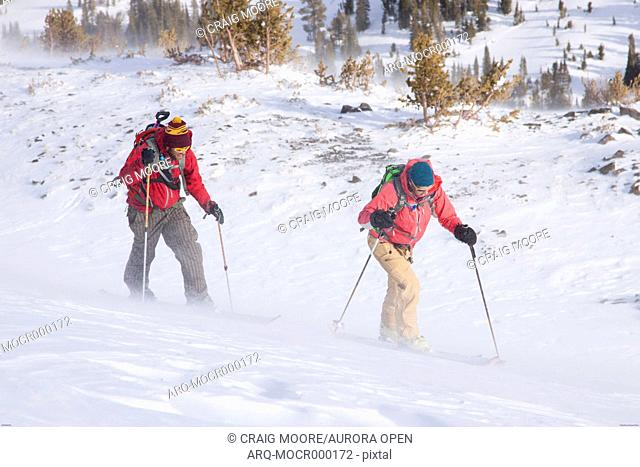 Two backcountry skiers in Pony, Montana