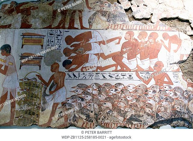 Nebamun viewing Geese and Cattle, tomb-chapel decoration, British Museum, London, UK