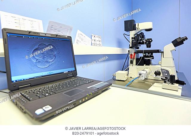 Embryo selection for IVF, URA, ARU, Assisted Reproduction Unit, In Vitro Fertilisation, Intra Cytoplasmic Sperm Injection, Hospital Donostia, San Sebastian