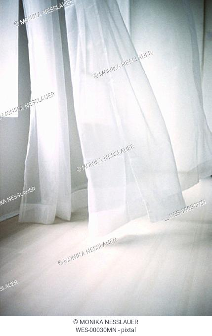 Curtains windswept