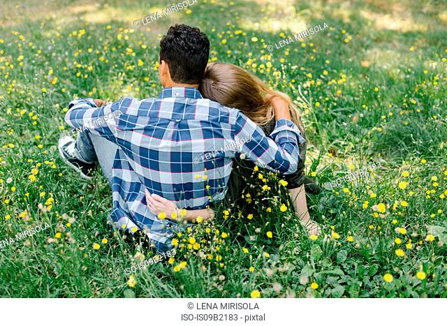 Rear view of couple sitting on grass hugging