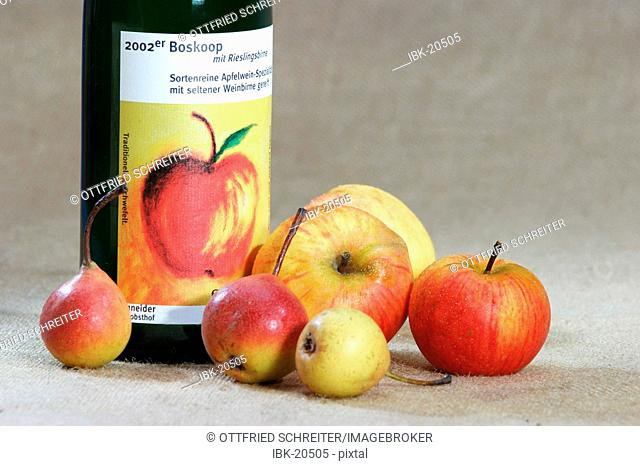 Cider bottle with apples (Goldparmäne) and pears (Rieslingsbirne)